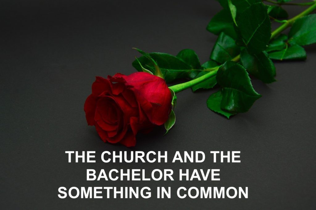 The Church and the Bachelor Have Something in Common
